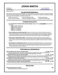Resume Examples For It Professionals 8 Best Sales Resume Images Sales Resume Resume Sales
