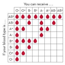 Blood Type Compatibility Chart Blood Type Chart Blood