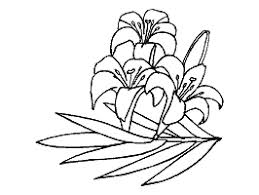 Flowers Coloring Pages And Printable Activities 1