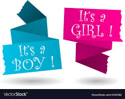 Origami Banner Boy Girl Announcement Royalty Free Vector