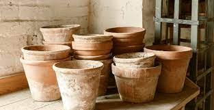 planters plant pots