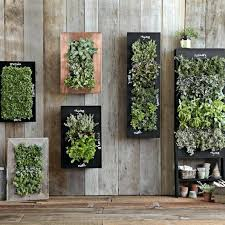 wall herb pots wall garden planter boxes intended for vertical planters decorations herb pots wall clock
