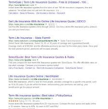 Term Life Insurance Online Quotes