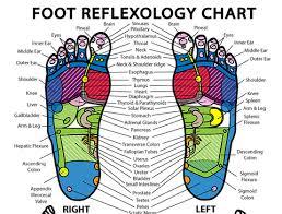 Foot Chart Foot Reflex Chart