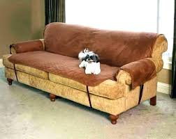 pet couch protector pet sofa cover exotic sofa covers for pets sofa furniture pet covers pet pet couch protector