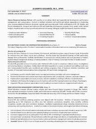 30 Sample Entry Level Hr Resume Picture Popular Resume Sample