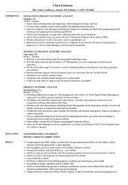 Project Support Analyst Resume Samples Velvet Jobs
