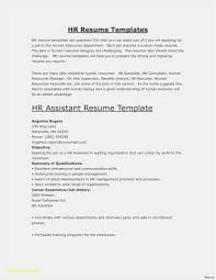27 Combination Resume Format New Best Resume Templates