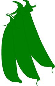 green beans clip art. Plain Art Download This Image As For Green Beans Clip Art