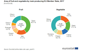 Fruit And Vegetable Challenge Chart The Fruit And Vegetable Sector In The Eu A Statistical