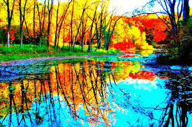 cool colorful nature photography. Unique Nature Intense Color Photo Of Reflections In Wright Woods Throughout Cool Colorful Nature Photography