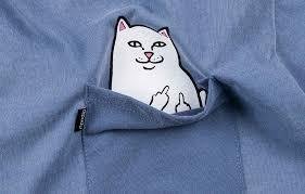 Как отличить подделку «<b>Ripndip</b>» - <b>футболка</b> «Lord Nermal Pocket»