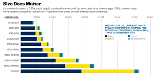 ceo pay in private companies net chief executive comp report 1