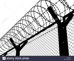 fence drawing. 1300x1067 Fence With A Barbed Wire, Silhouette Illustration Stock Photo Drawing O