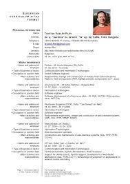 Current Curriculum Vitae Format Cv Template Doc Resume Example