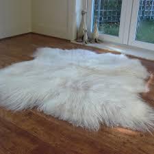 icelandic sheepskin rug natural double xl sheep skin rug