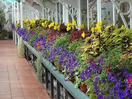 mediterranean house birmingham botanical gardens