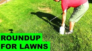 Image For Lawns Roundup For Lawns Before After Review