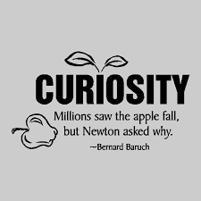 Curiosity Quotes Curiosity Quotes Enchanting Curiosity Quotes Brainyquote 15