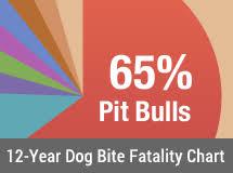 12 Year Us Dog Bite Fatality Chart 12 Year U S Dog Bite Fatality Chart 2005 To 2015 Fing