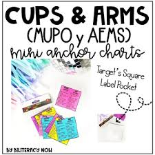 Arms And Cups Anchor Chart Spanish Aems Y Mupo English Cups Arms Mini Pocket Anchor Charts