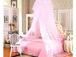 princess bed canopy – Newest Living Pictures Picture