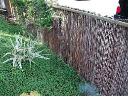 wire fence covering. Wonderful Wire Fence Covering Ideas Wire Chain Link Cover Up  Decorating Living Room   And Wire Fence Covering L