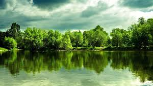 hd backgrounds 1080p nature.  Nature Green Nature Lake Wallpaper Wide With Hd Backgrounds 1080p U