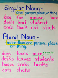 Singular Nouns Plural Nouns Anchor Chart Language Arts