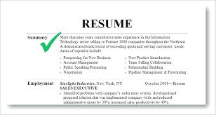 Delightful Design What Should I Put On My Resume What Should I Put