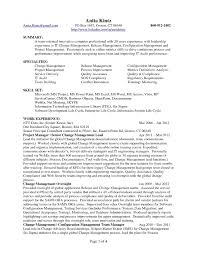 Change Management Resume Template Camelotarticles Com