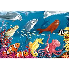 Image result for google images for kids ocean life