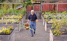 building a raised bed garden. Building A Raised Bed Garden