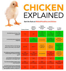 Growth Of A Chicken Chart Chicken Meat Giant Guilty Of Misleading Advertising