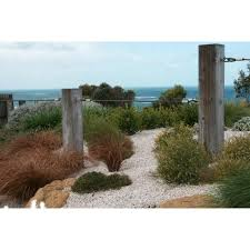 Small Picture Ocean Road Landscaping Landscaping Landscape Design 23