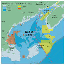 Gulf Of Maine Council