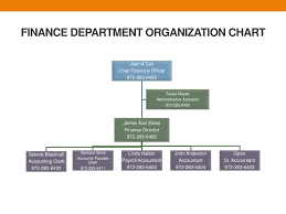 Department Of Finance Organisation Chart Ppt Finance Department Organization Chart Powerpoint