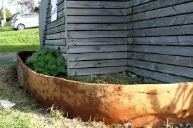 corrugated metal garden bed corrugated raised garden bed corrugated raised garden bed fall raised garden beds