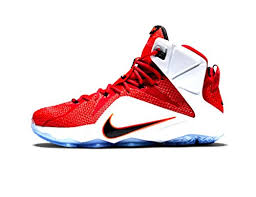 nike boys basketball shoes. nike lebron 12 heart of a lion 684593 601 in the uae. see prices reviews; shoes boys basketball