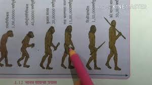 Evolution Of Man Chart Human Evolution In Marathi Heredity And Evolution