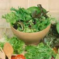 com gourmet mixed lettuce greens garden seeds 5 lbs bulk non gmo heirloom vegetable gardening microgreens seed mix garden outdoor