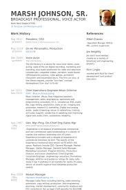 Ceo Resume Gorgeous President Ceo Resume Samples VisualCV Resume Samples Database