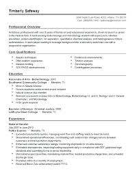 The Best Resume Templates