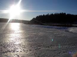 Bildresultat för vinterbilder