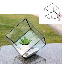geometric glass terrarium planter heptahedron tilted cube shape 8 5 inches tall tilted