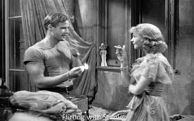 norman holland on elia kazan a streetcar d desire  flirting stanley