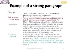 Persuasive Essay Examples For College Students Example Of Persuasive Essay College Rabotnovreme Info