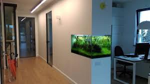 aquarium office. Planted Office Wall Tank Aquarium
