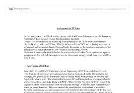 hamburger model for teaching essay writing essay on decisiveness an european union law law european essay uni assignment centre essays on internet privacy help writing