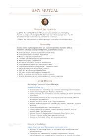 Resume Template Sample Resume Examples Sample Resume Template